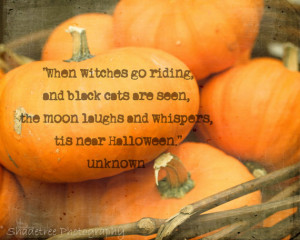 Fall Autumn Halloween Witches Quote Orange Fall Decor October Harvest ...