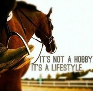 Horse Quotes - horse anecdotes - Pinterest