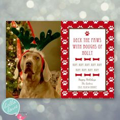 Merry Christmas Dog Sayings