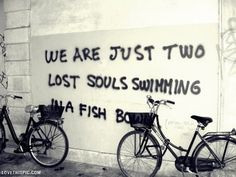 two lost souls life quotes quotes graffiti song lyrics pink floyd