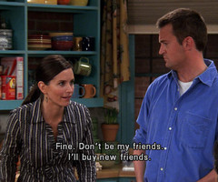 Go Back > Pix For > Monica Geller Quotes About Cleaning