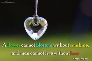 Love Thoughts-Quotes-Max Muller-Flower-Blossom-Sunshine-Best Quotes