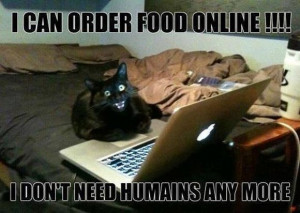 online cat meme share this funny cat meme on facebook