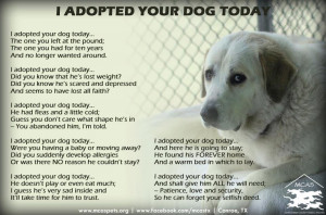 Pet Adoption Poem