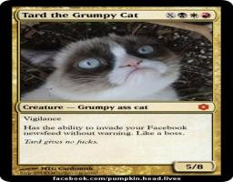 ... Of The Year ... TARD The Grumpy Cat ... Quote: I Didn't Even Want This