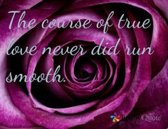 ... ralph waldo emerson, shower curtains, shakespeare quotes, purple roses