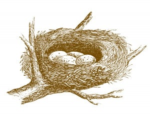 Empty Nest Clipart Free vintage images nest eggs