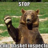 yogi-bear-stops-you-for-inspectation.jpg