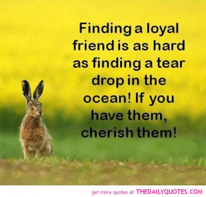 Loyalty And Friendship Quotes Photo