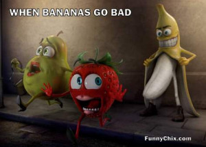 new funny pictures bird painting new funny picture bad fruit