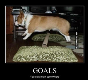 funny-its-good-to-have-goals-meme.jpg