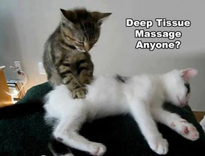 massage quotes funny massage jokes funny massage quotes and sayings ...