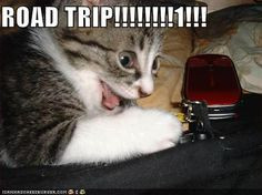 Funny+Quotes+About+Road+Trips | boat trip boat trip sayings and More