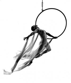 Pole dancing and aerial hoop Aerial Hoop, Artists Dance, Ariel Hoop ...