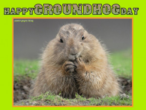 Groundhog Day Quotes Happy groundhog day greetings
