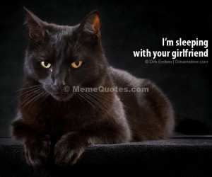 sleeping with your girlfriend! Download Black cat photo.