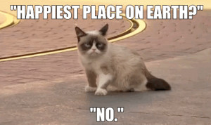 ... Worst Day At Disneyland Ever. Grumpy Cat Quotes #GrumpyCat #Meme #