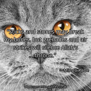 sticks-and-stones-may-break-my-bones-but-grenades-and-air-strikes-will ...