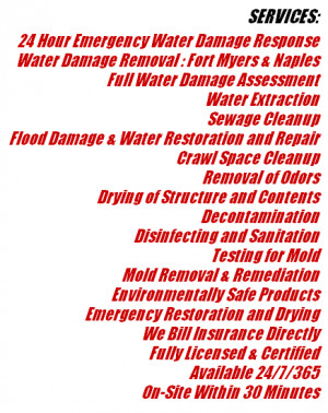 FOR A FREE HURRICANE ISAAC FLOOD DAMAGE RESTORATION SERVICE QUOTE CALL