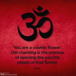 Meditation Quotes - om
