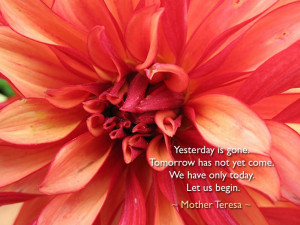 Tuesday, February 14, 2012