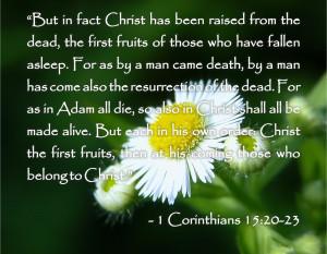 Bible Quotes About Death - 1 Corinthians 15:20-23