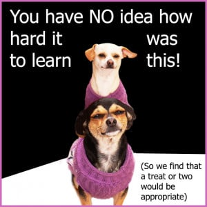 ... page about dog quotes go to the main page picture quotes jump back to