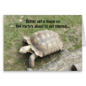 Cute Turtle Pictures Quotes Funny turtle birthday greeting