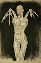 Fallen Angel Drawings Prints