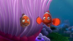 Finding-Nemo-finding-nemo-3561565-853-480.jpg