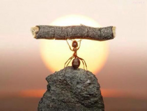 Always believe in your strength
