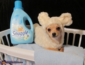Snuggle Bear - Homemade costumes for pets