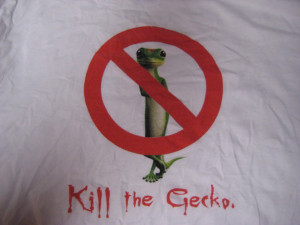 Related Pictures geico gecko pictures funny 4730662720572364 jpg