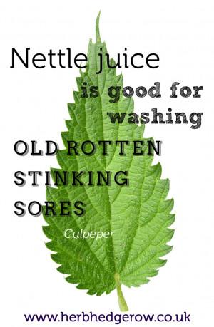 Herbal Quote Nettle Culpeper