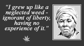 harriet tubman was an african american born to parents harriet ...