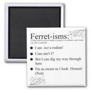 Funny Ferret Gifts Refrigerator Magnet
