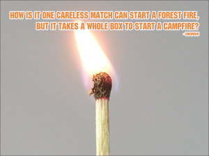 How is it one careless match can start a forest fire, but it takes a ...