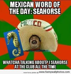 Mexican word of the day More