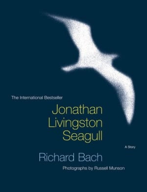jonathan livingston seagull literary analysis A literary analysis of jonathan livingston seagull by richard bach  933 words 2 pages a critique of the protagonist in jonathan livingston seagull, a book by richard bach 596 words 1 page an analysis of the book, jonathan livingston seagull by richard bach  superstition and symbolysm in richard bach's story jonathan livingston.