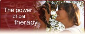 Pet therapy hero