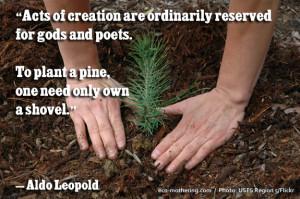 Aldo Leopold Quotes