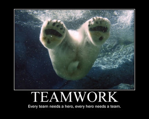 Teamwork Every Team Needs A Hero