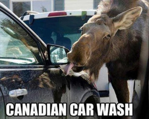 Just to let you know I am from Northern Michigan so Canadian jokes are ...