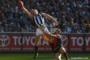 Funny AFL Pictures
