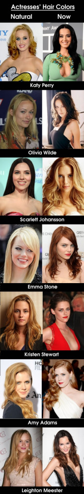 Related Pictures blonde hair color preference loreal celebrity ...