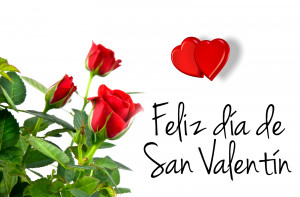 by valentines day quotes in spanish happy valentines day in spanish ...