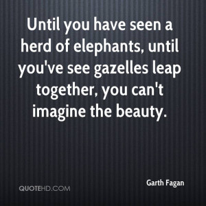 Until you have seen a herd of elephants, until you've see gazelles ...