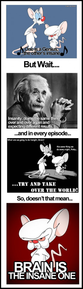 Pinky And The Brain Quotes...