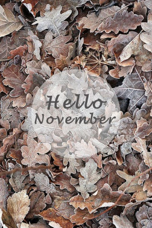November, a reminder to be thankful and what a beautiful season!
