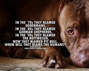 Go Back > Gallery For > Pitbull Dog Quotes Positive
